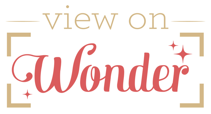 view on wonder logo
